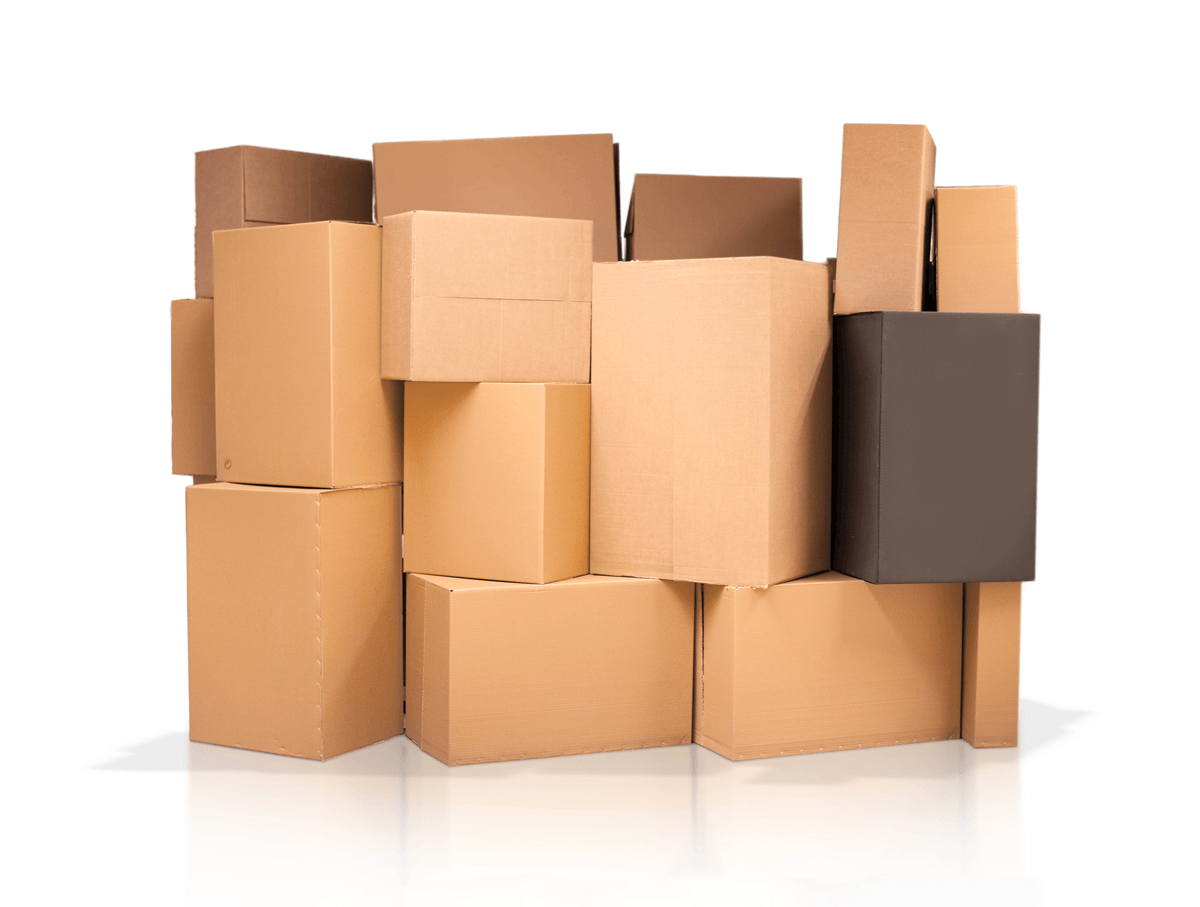 Manufacture carton boxes adhesives